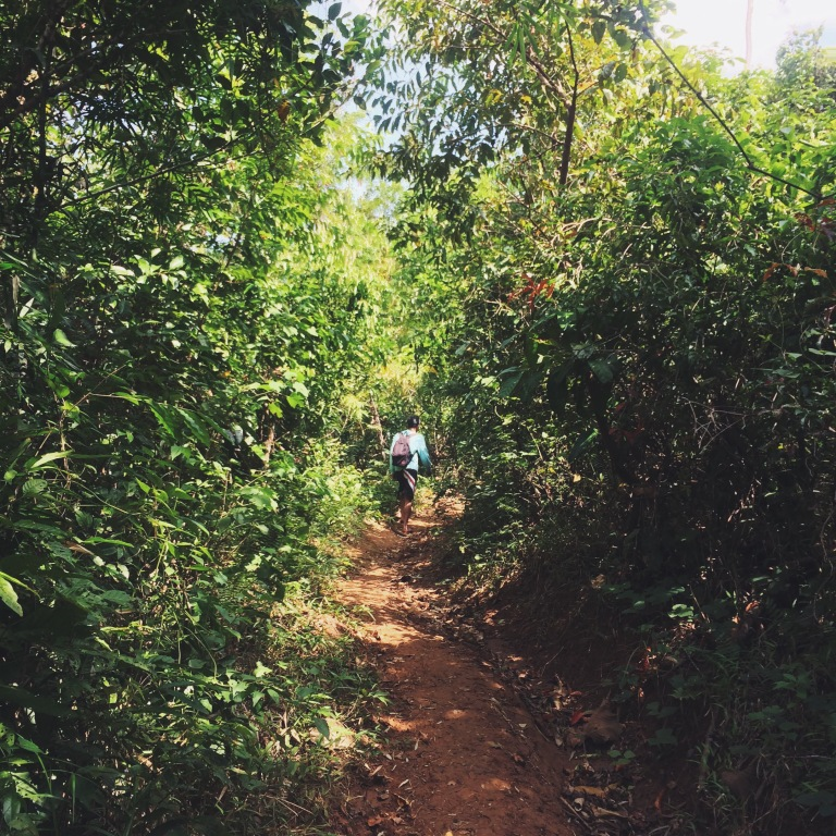 Trail to Aliw Falls